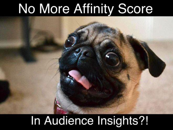 Freaked Out by Having No More Affinity Score in Audience Insights?